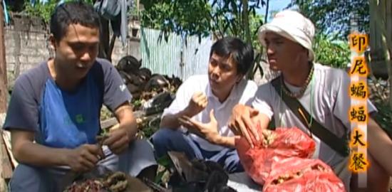 台湾外景节目尺度引争议 主持人试吃蝙蝠品尝味道