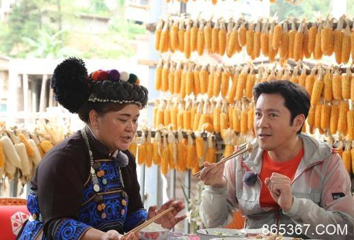 蔡国庆霍尊沿街卖鸡遇滑铁卢 鸡中贵族如何飞出大山?